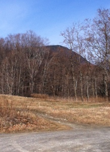 Looking up at the Mount Greylock summit from the parking lot.