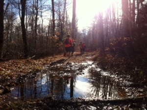 Dodging puddles along the way up Mount Greylock.