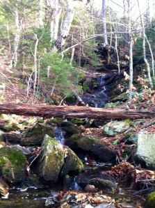 The warm weather meant the waterfalls were flowing on Mount Greylock.
